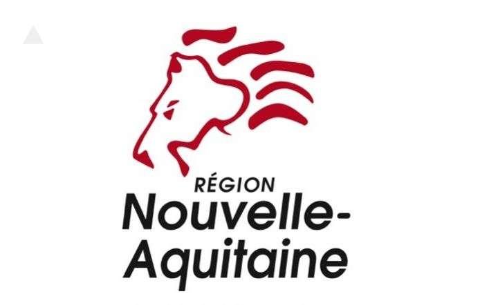 le-nouveau-logo-de-la-region-ressemble-volontairement-a-un-tete-de-lion